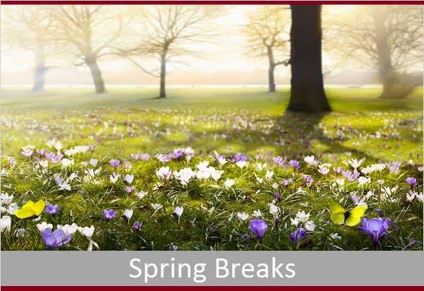 Spring Breaks
