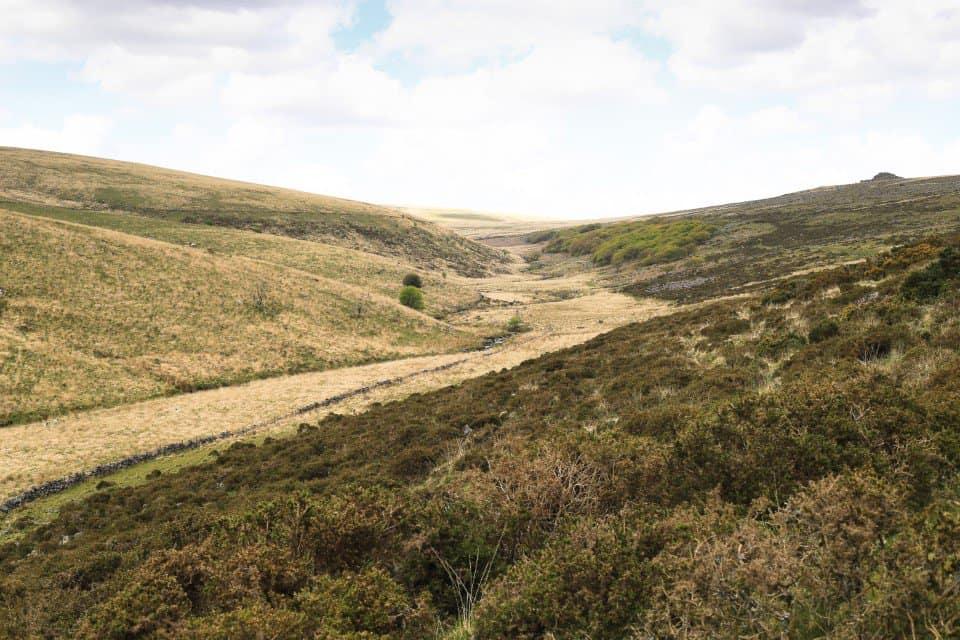 Dartmoor view towards Wistmans Wood