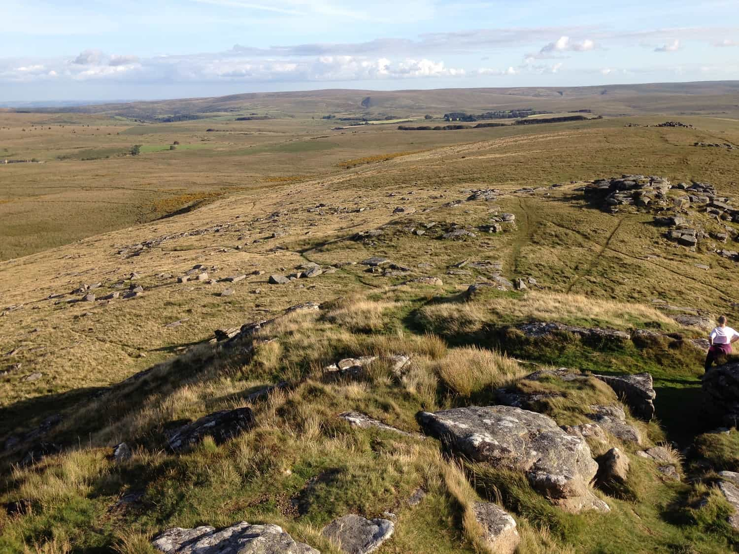 View across Dartmoor from Longaford Tors