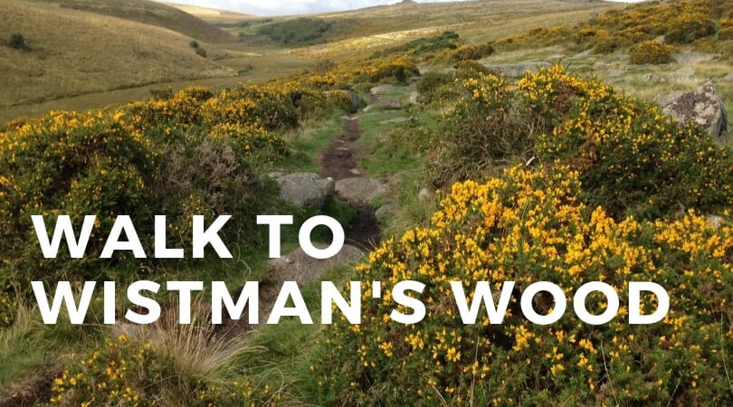 Walk to Wistman's Wood
