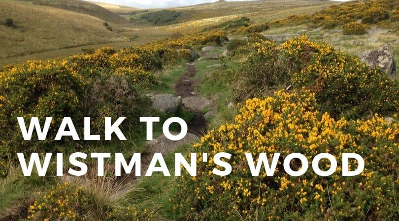 Walk to Wistman's Wood